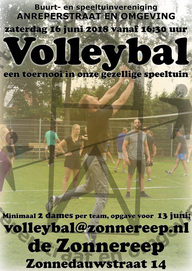 Volleybaltoernooi 16 juni 2018
